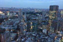 Tokyo, evening view