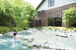 Hot spring resorts (onsens)