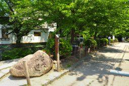 Kinkaku-ji, Kyoto photo
