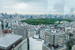 Tokyo viewed from Tokyo Metropolitan Government Buildings, Shinjuku