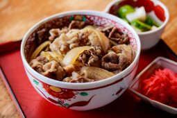 Fast Meal - Gyudon