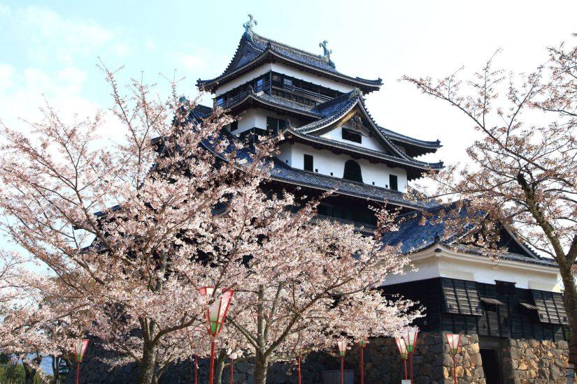 Shimane castle. Shimane: Myth and Mountains