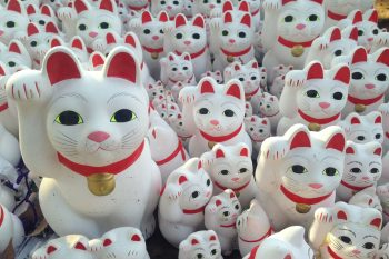 Lucky cats photo