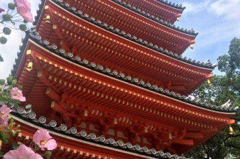 Photo of the five-story pagoda in Fukuoka
