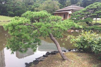 Photo of Hamarikyu Gardens