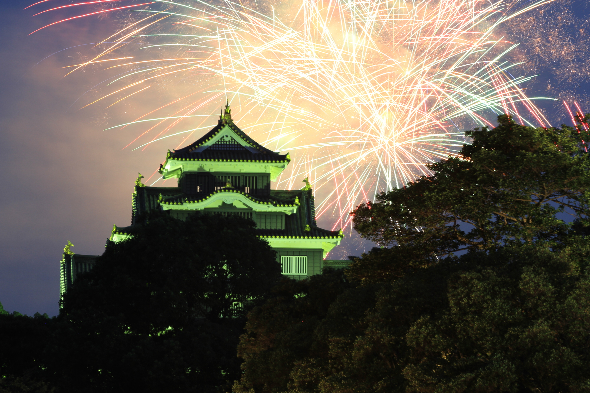 Photo of Fireworks on the first day of Momotaro Festival