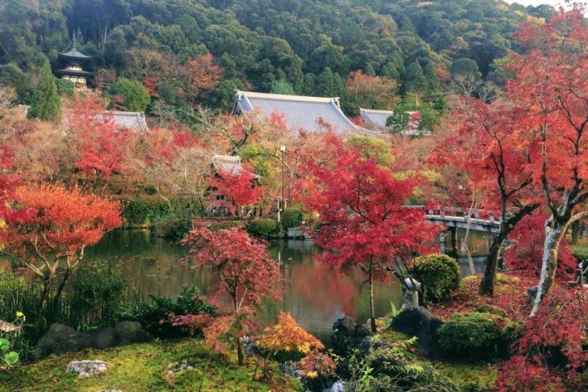Photo at Enko-ji, Kyoto