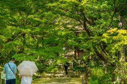 Saihoji, Kyoto